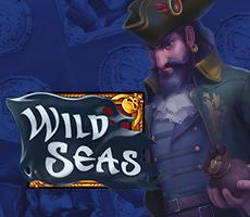 Wild Seas от ELK – новый слот 2018 года